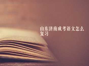 山东济南成考语文怎么复习